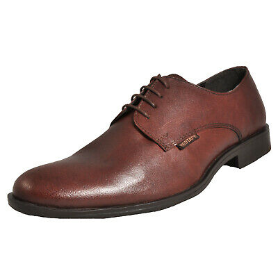 Red Tape Regency Men's Classic Casual Leather Formal Dress Shoes Brown