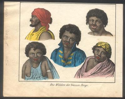 Tasmanian Aborigine Busts Colour Engraving Early 1800s