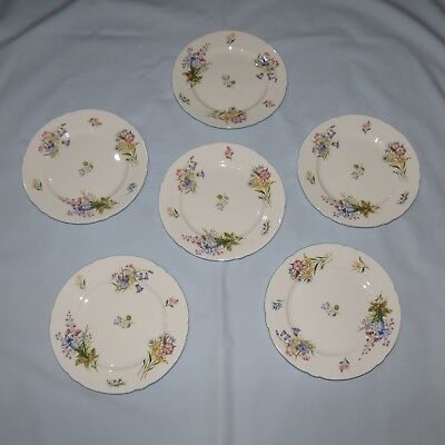 set of 6 SHELLEY WILDFLOWERS PATTERN SALAD OR LUNCHEON PLATES 8inch DIAM