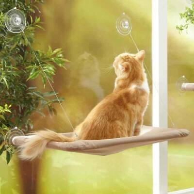 Window Mount Cat Bed Suction Cup Hanging Pet Sunshine Hammock Perch Cushion New