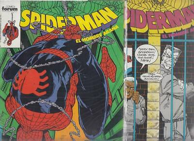 SPIDERMAN.VOL. 1  Nºs.   198.  221.    ( LOTE  2  NUMEROS  )   FORUM...