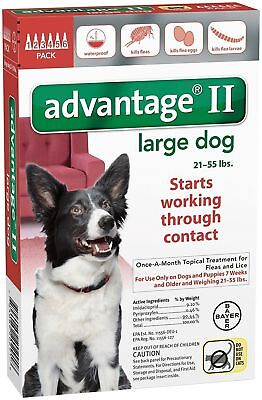 READ ABOUT FAKES - 6-Pk Bayer Advantage II Flea Control for Large Dogs, 21-55 lb