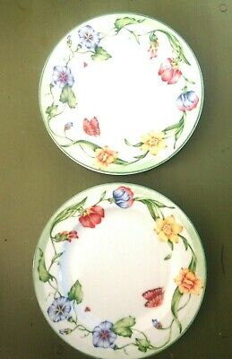 Coventry Secret Garden Two Salad Plates Fine Porcelain dishwasher~microwave safe