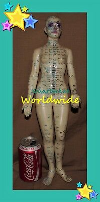 Vintage Acupuncture China Chinese Medicine Doll Figure Model