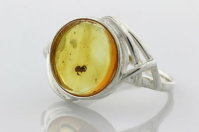 Fossil SPIDER Inclusion Genuine BALTIC AMBER Silver Ring 7.25 r151126-12