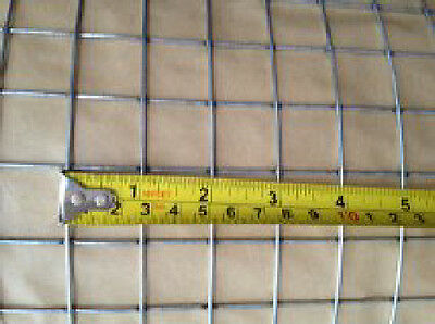 """WELDED WIRE MESH 1"""" x 1"""" x 16g - 36"""" x 6m poultry / aviary"""