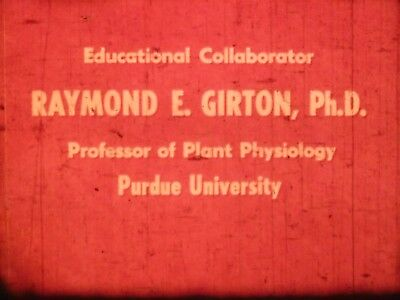 Photosynthesis: Chemistry Of Food Making 1964 16mm short film