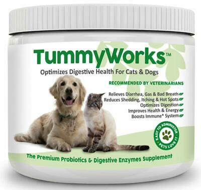 Best Probiotic 2020 TUMMYWORKS PROBIOTICS FOR Dogs & Cats, Best Powder To Relieve