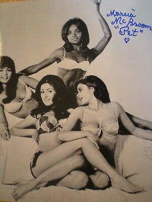 """Sexy Photo """"beyond The Valley Of The Dolls""""-Marcia Mcbroom-""""pet""""- Russ Meyers"""