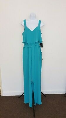 0999e7369539 BNWT ADRIANNA PAPELL light mink lace   sequin dress size 22 mother ...