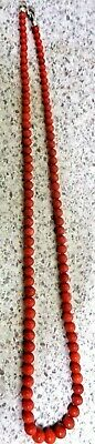 Glamorous Graduating 20 Inches Long Genuine Natural  Italian Red Coral Beads