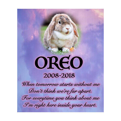 Personalised Pet Memorial Plaque Rabbit Bereavement Poem Sympathy Photo Sign