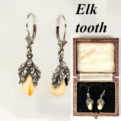 Antique Sterling Silver Mounted Elk Tooth Earrings, c.1900, Black Forest