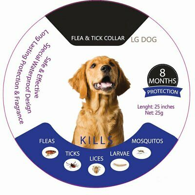 Adjustable Flea and Tick Collar Anti Insect for Pet Dog Cat 8 Month Protection