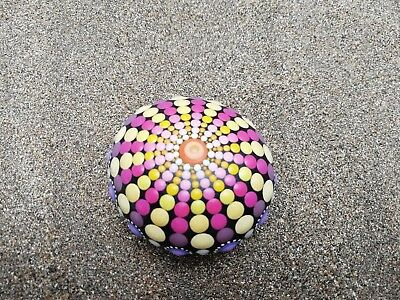 Sea urchins Stone hand painted. Summer Collection 15- dotart Stone- Painted Rock