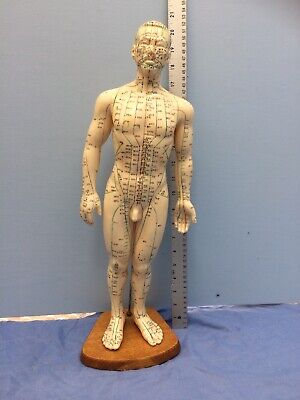 Vintage Acupuncture Chinese Medicine Doll Figure Model Male