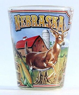 Nebraska State Mural Shot Glass Shotglass