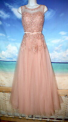 Vintage Pretty BLUSH Pinkish Floral Appliques Nude Mesh Sheer TULLE Gown SZ 6