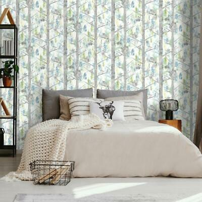 Teal and Silver Squirrels Birch Trees Wallpaper 90752