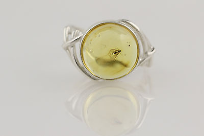 Fossil Insect GNAT Inclusion BALTIC AMBER Silver Ring 7.25 r150915-4