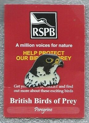 RSPB Pin Badge - Peregrine  on A million voices for nature  Orange Trifold card