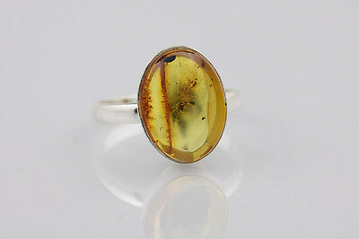 Fossil Insect ANT Inclusion BALTIC AMBER Silver Ring Adjustable 6.5 r140724-7