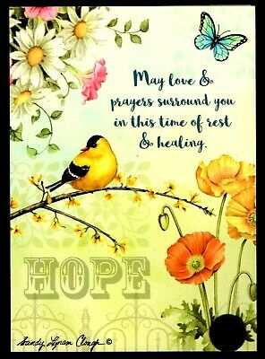 Get Well Butterfly Daisies Encouragement RELIGIOUS Get Well Greeting Card