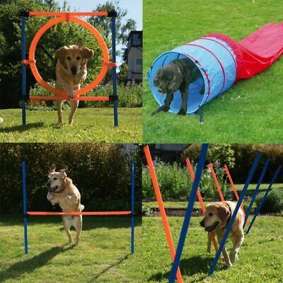 Dog Agility Course Outdoor Training Equipment - 4 Pieces