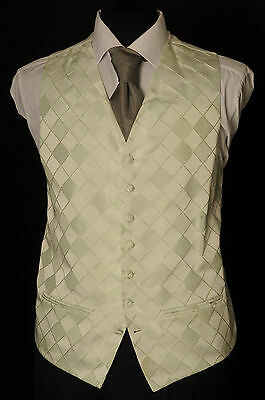 W - 1085. Men's/Boy's Pale Lime Green Diamond Wedding Waistcoat/ Dress / Suit