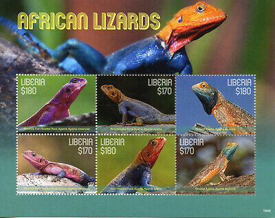 Liberia 2018 MNH African Lizards Rock Ground Agama 6v M/S Reptiles Stamps