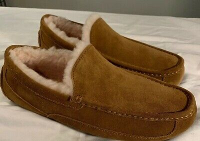 3a7c70906a9 UGG MEN ASCOT Moccasin Slippers 1101110 Chestnut SZ 11 Water-Resistant New