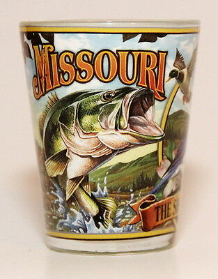 Missouri State Mural Shot Glass Shotglass
