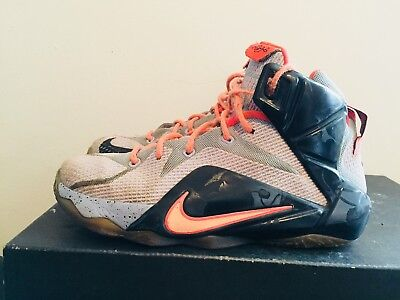 hot sale online 8ca78 31c68 2015 Youth Nike LeBron XII 12 Easter Aluminum Black Glow Size 4.5Y Used  Rare DS