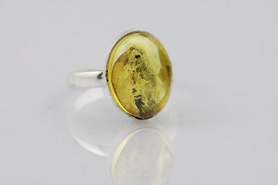 Fossil Insect GNAT Inclusion BALTIC AMBER Silver Ring Adjustable 6 r140724-3