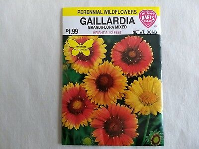 Gaillardia Grandiflora Mixed Perennial Wildflower Seeds, Attracts Butterflies