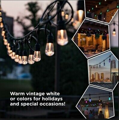 Integrated LED String Light with Color Changing Bulbs 12-Light 24 ft. Home Decor