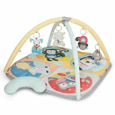 Skip Hop Hug & Hide Baby Activity Gym