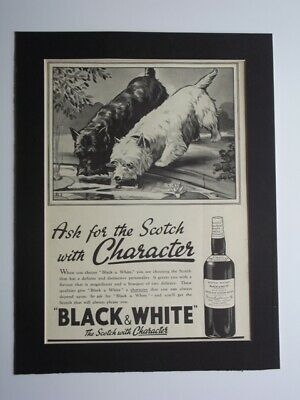 1938 Black & White Scotch Whisky Magazine Print Advertising - Terrier Dogs