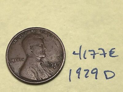 1929 D Lincoln Cent Very Nice Premium Collection 4177E Wheat Penny