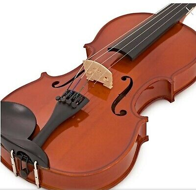 Full Size 4/4 Acoustic Violin Set with Case,Bow & Chin Rest for Student Beginner