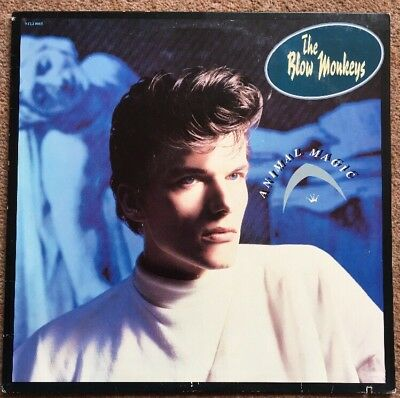 The Blow Monkeys Animal Magic LP Buy 5 LPs 4 £3.99 Postage (UK)