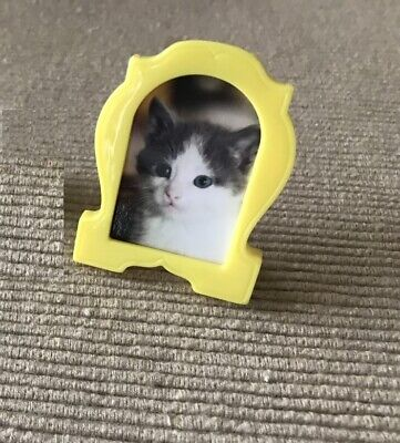 """American Girl Gabriela's cat photo picture desktop frame kitty food 18"""" doll"""
