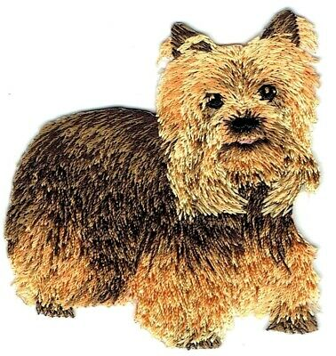 Yorkshire Terrier Dog Puppy 144-T Animal Club Yorkie Embroidered Iron On Patch