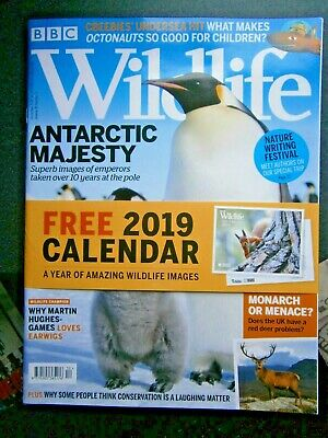 BBC Wildlife Magazine December 2018 (new) With Calendar 2019