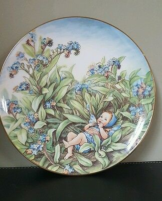 Border Fine Arts Forget Me  Not Collectable Fairy Plate