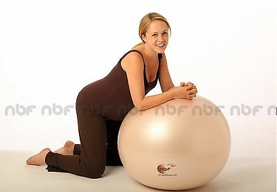 New 65cm Natural Birth & Fitness Birthing Ball with Pump - NBF pregnancy, gym