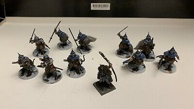WARHAMMER AOS AGE Of Sigmar Fantasy Skirmish Frostgrave Warband Painted