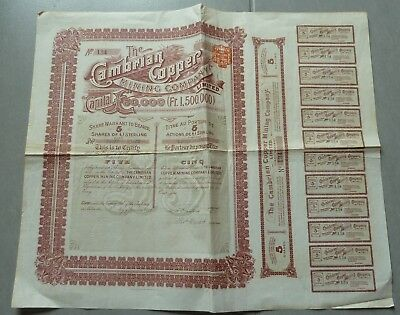 Rare Action The Cambrian Copper Mining Company Limited 1900