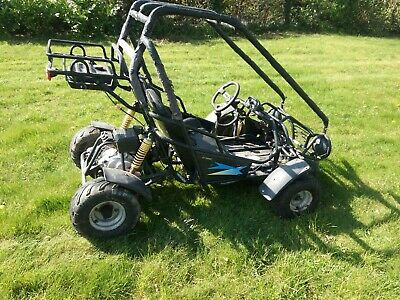Petrol Go Kart 110cc 4 Stroke 2 Seater Buggy Off Road No Reserve.