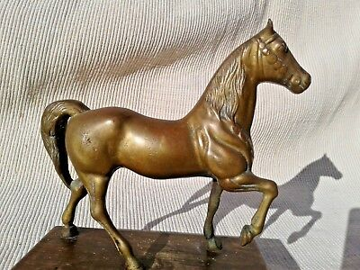 ANTIQUE VICTORIAN EDWARDIAN heavy BRASS HORSE FIGURINE STATUE on WOODEN PLINTH